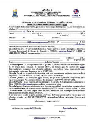PROBEX - 2020 - Termo de Compromisso