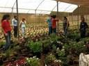 Floricultoras da Associação de Flores Vila Real_Foto de Ale Lontra_